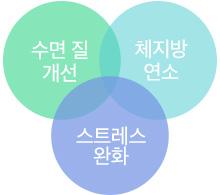 세가지다이어트필3