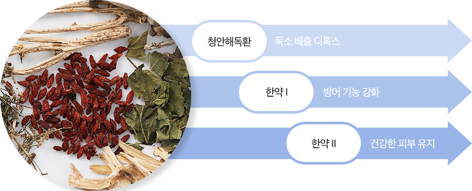 청안해독환 / 디톡스 한약